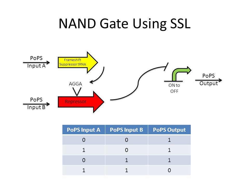 NAND Gate Using SSL PoPS Input APoPS Input BPoPS Output 001 101 011 110 Frameshift Suppressor tRNA PoPS Input A PoPS Input B Repressor AGGA PoPS Outpu