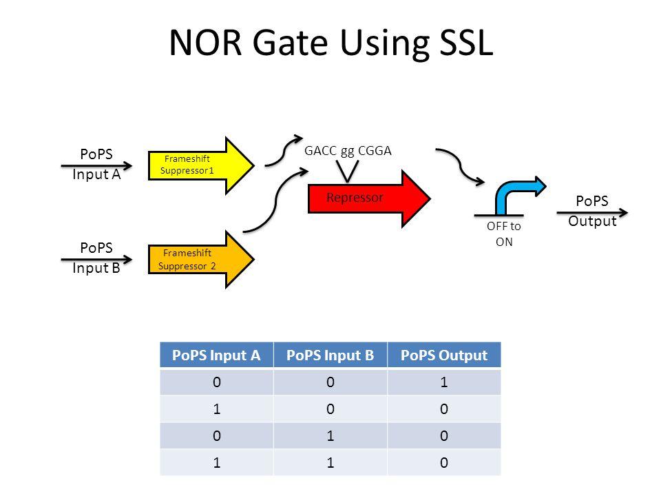 NOR Gate Using SSL GACC gg CGGA Repressor PoPS Input APoPS Input BPoPS Output 001 100 010 110 Frameshift Suppressor 1 Frameshift Suppressor 2 PoPS Inp