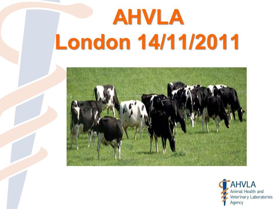 AHVLA London 14/11/2011