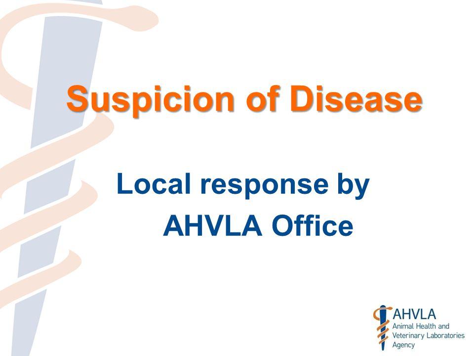 Suspicion of Disease Local response by AHVLA Office