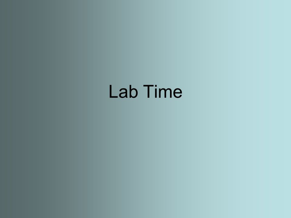 Lab Time