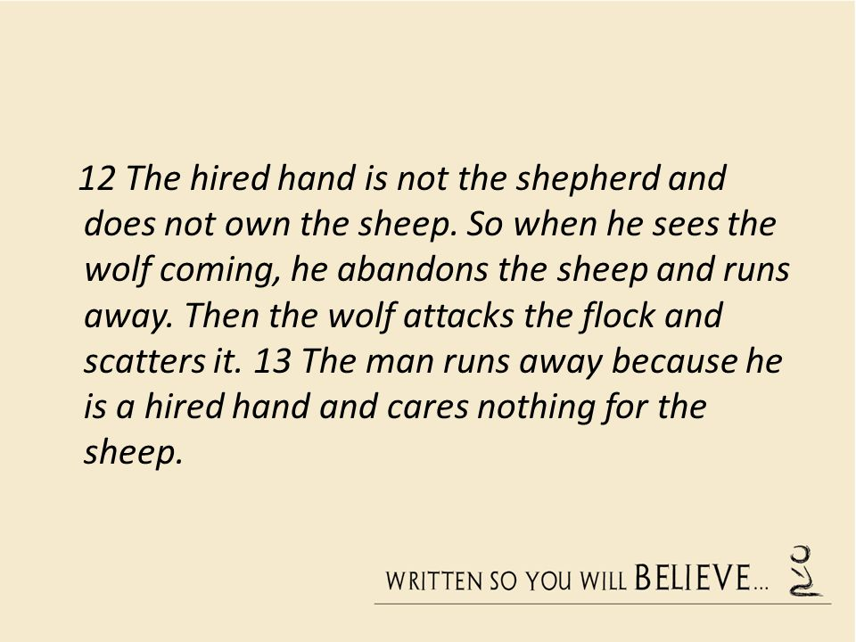 12 The hired hand is not the shepherd and does not own the sheep.