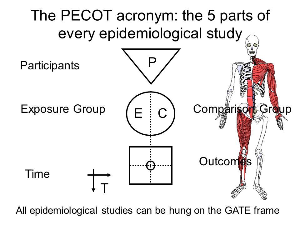 EG CG O T P RCT: Allocate randomly by investigators (e.g drugs) EG CG O T P Cohort: Allocate by measurement (e.g.