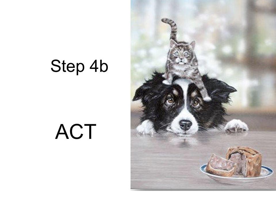 Step 4b ACT
