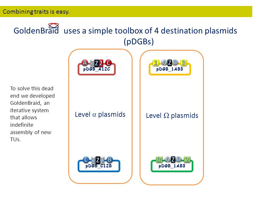 pDGB_C12B pDGB_1AB3 pDGB_A12C Level α plasmids Level Ω plasmids GoldenBraid uses a simple toolbox of 4 destination plasmids (pDGBs) Combining traits i