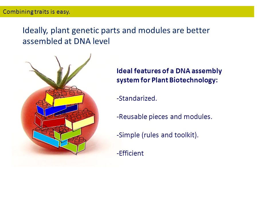 Ideal features of a DNA assembly system for Plant Biotechnology: -Standarized. -Reusable pieces and modules. -Simple (rules and toolkit). -Efficient C