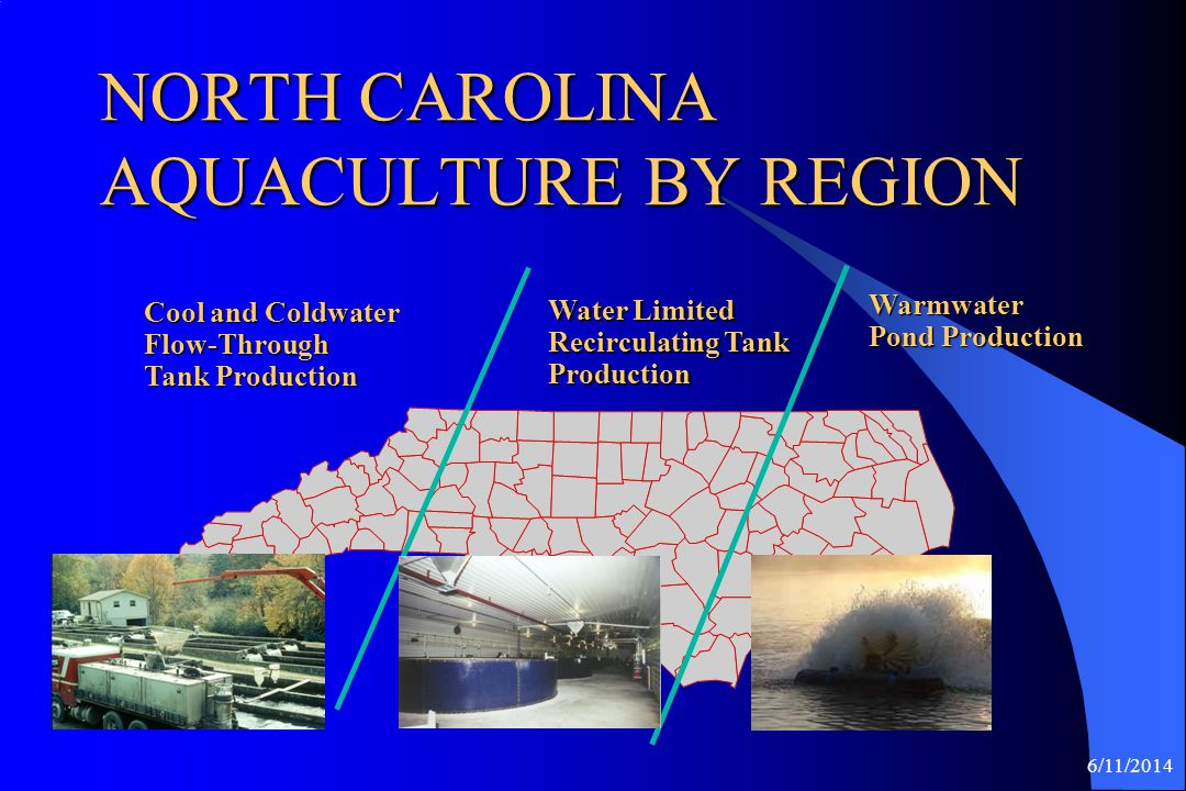 6/11/2014 2008 NORTH CAROLINA HYBRID STRIPED BASS INDUSTRY* 14 Food Fish Producers 763 Pond Acres 1,276,849 Pounds * @ $2.90 – $3.20 / Pound Farm Gate Value = $3,894,389 Dr.