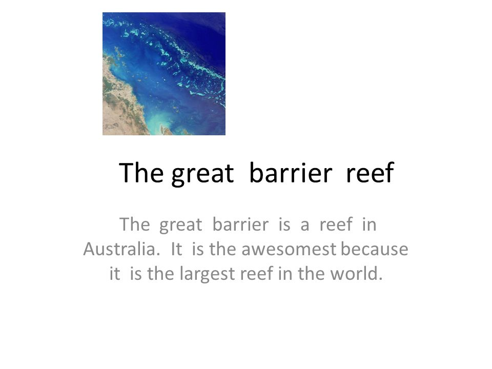 The great barrier reef The great barrier is a reef in Australia.
