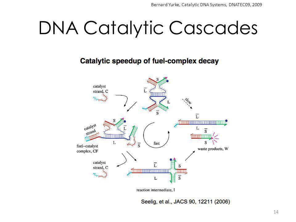 DNA Catalytic Cascades 14 Bernard Yurke, Catalytic DNA Systems, DNATEC09, 2009