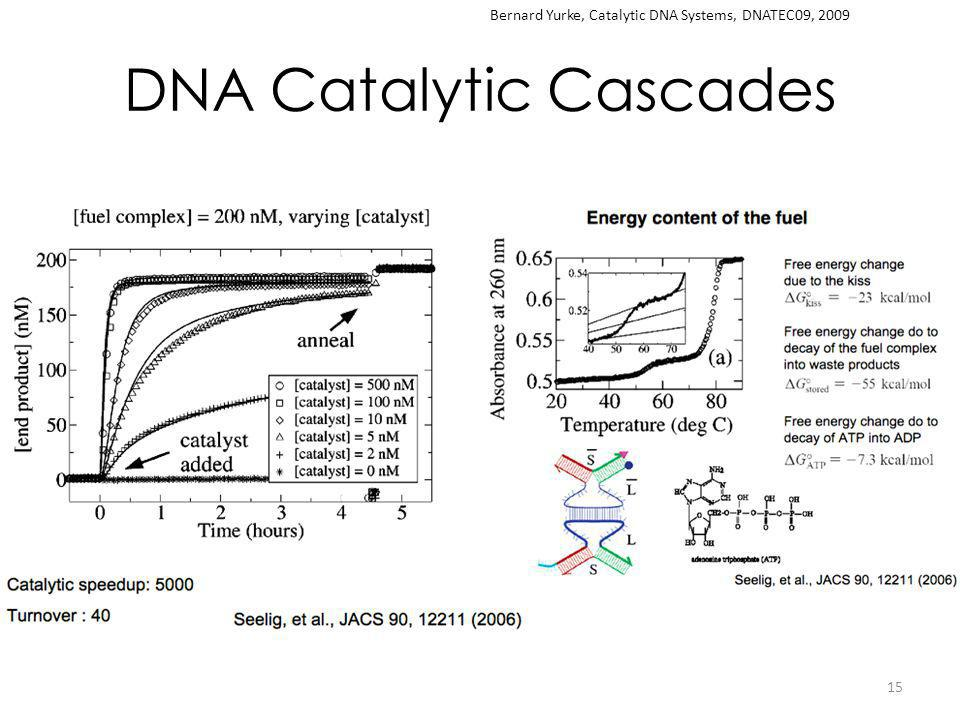 DNA Catalytic Cascades 15 Bernard Yurke, Catalytic DNA Systems, DNATEC09, 2009