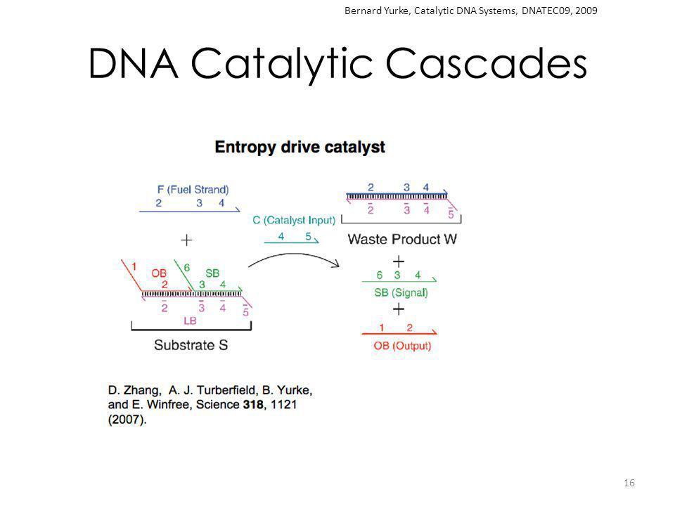 DNA Catalytic Cascades 16 Bernard Yurke, Catalytic DNA Systems, DNATEC09, 2009