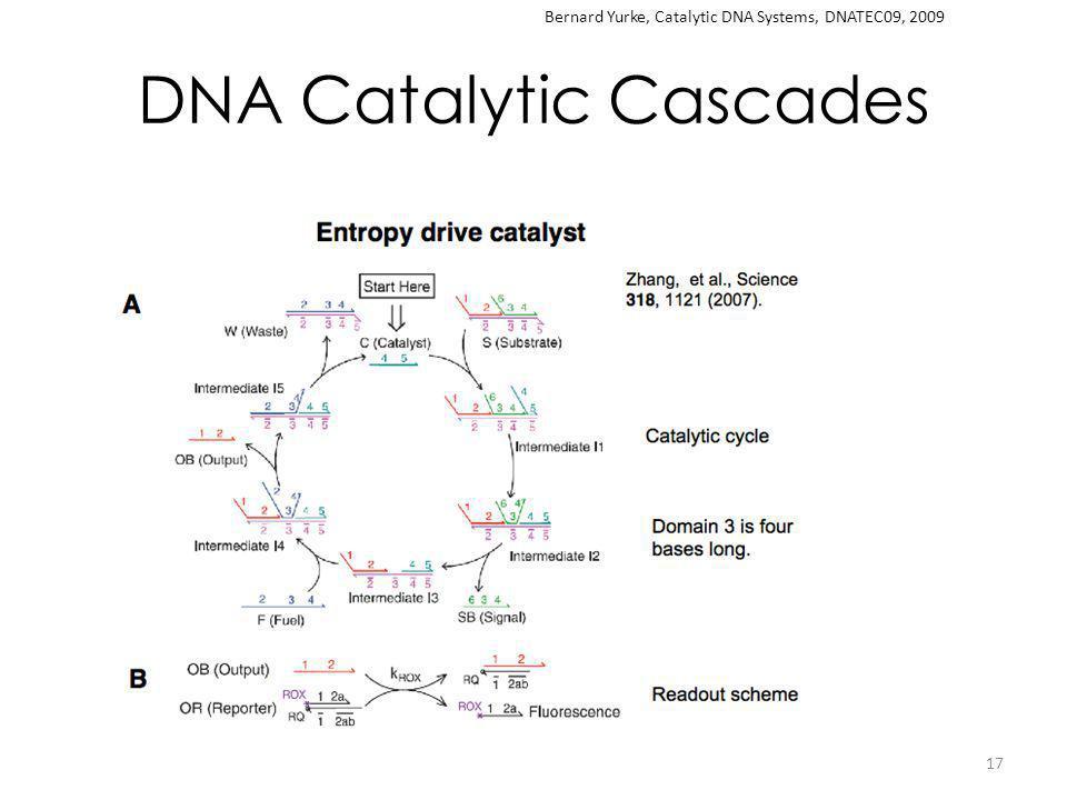 DNA Catalytic Cascades 17 Bernard Yurke, Catalytic DNA Systems, DNATEC09, 2009