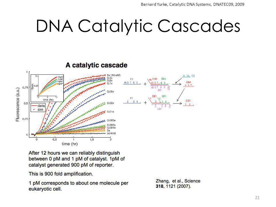 DNA Catalytic Cascades 21 Bernard Yurke, Catalytic DNA Systems, DNATEC09, 2009