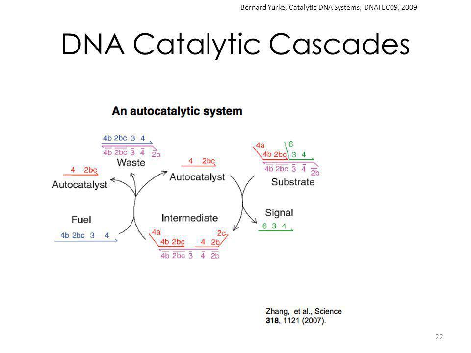 DNA Catalytic Cascades 22 Bernard Yurke, Catalytic DNA Systems, DNATEC09, 2009