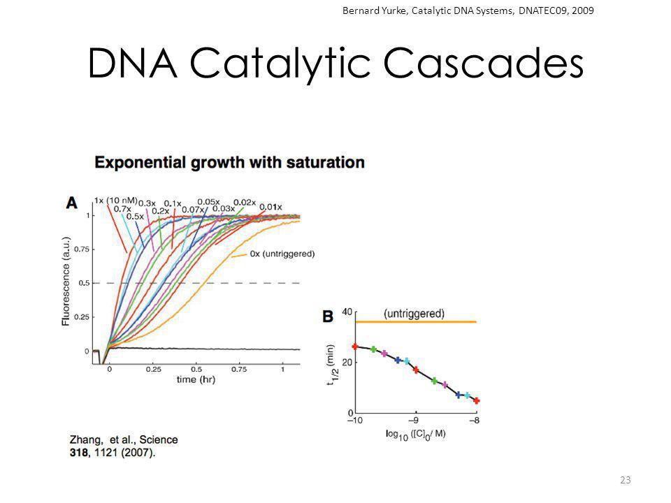 DNA Catalytic Cascades 23 Bernard Yurke, Catalytic DNA Systems, DNATEC09, 2009