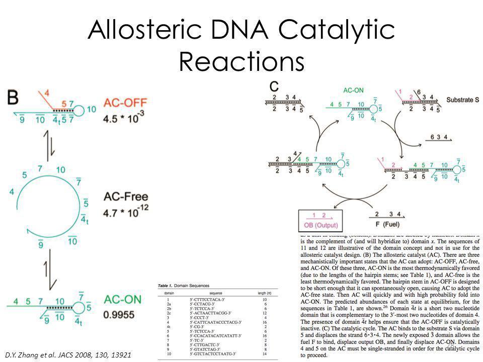 Allosteric DNA Catalytic Reactions D.Y. Zhang et al. JACS 2008, 130, 13921 28