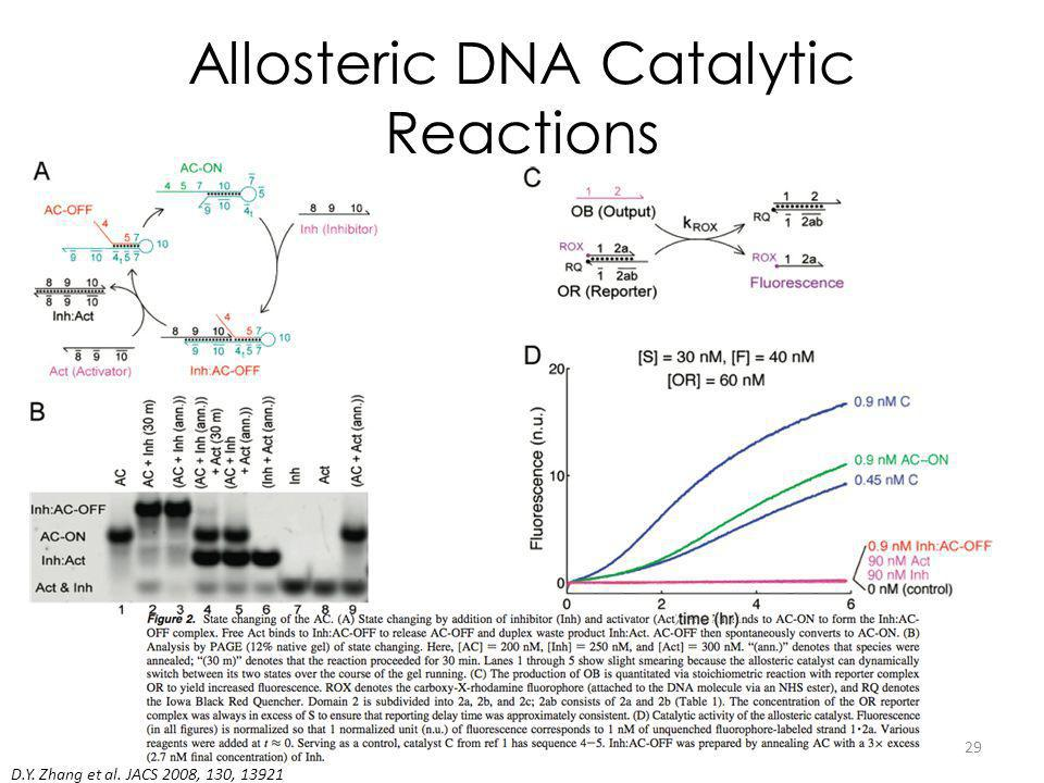Allosteric DNA Catalytic Reactions D.Y. Zhang et al. JACS 2008, 130, 13921 29