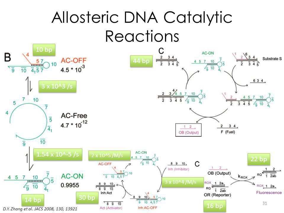 Allosteric DNA Catalytic Reactions D.Y. Zhang et al.
