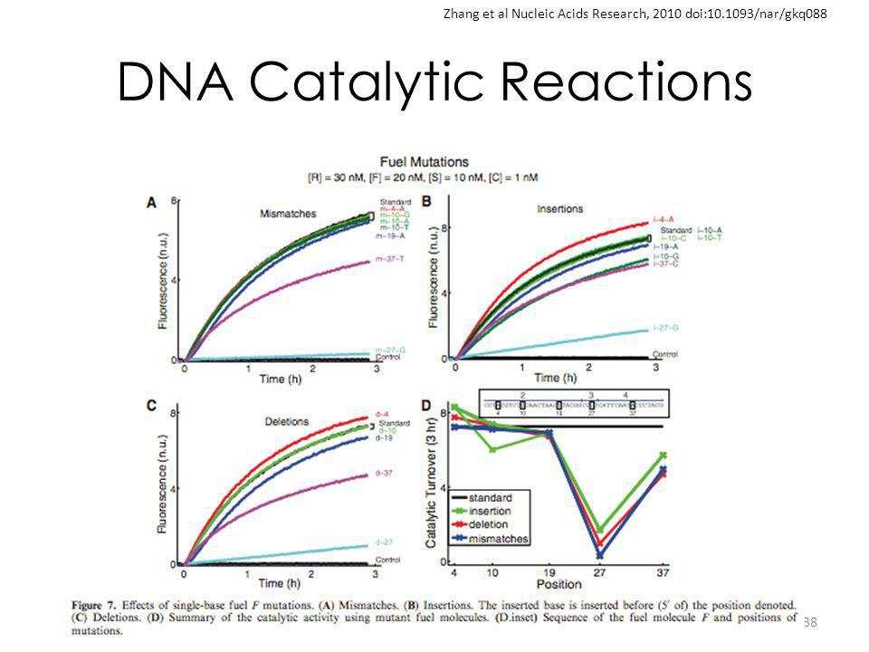 DNA Catalytic Reactions 38 Zhang et al Nucleic Acids Research, 2010 doi:10.1093/nar/gkq088