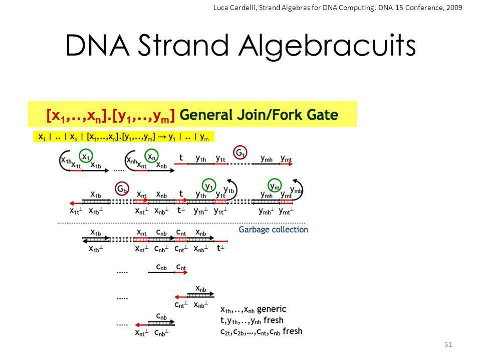 DNA Strand Algebracuits 51 Luca Cardelli, Strand Algebras for DNA Computing, DNA 15 Conference, 2009