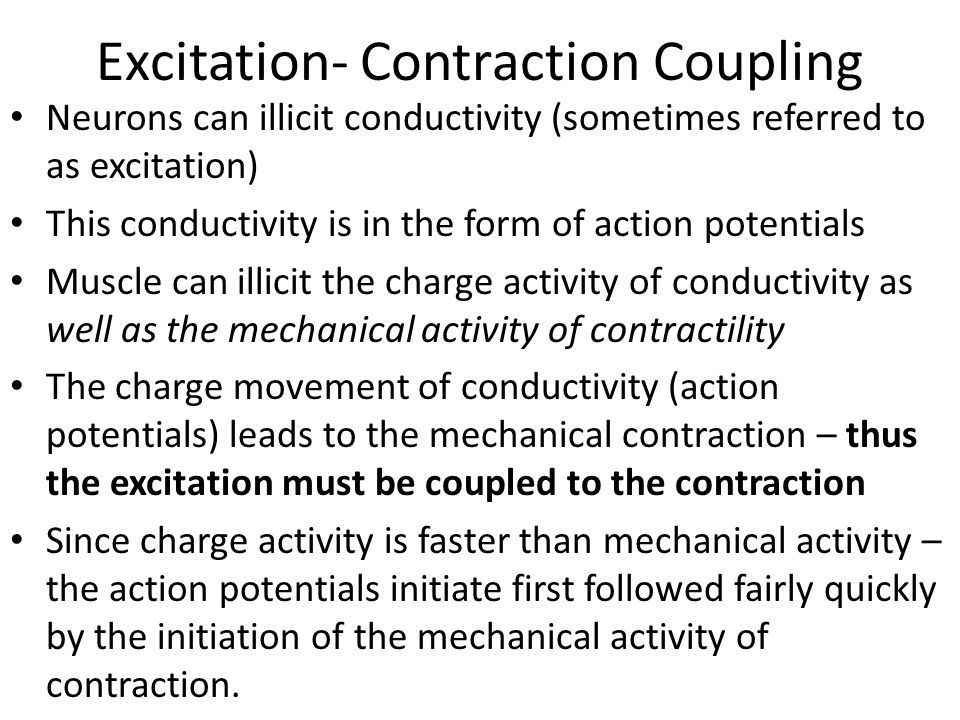 Latent Phase of Contraction The differential in time between when the action potentials initiate and the contraction initiates is termed the latent phase of muscle contraction Action potential initiated