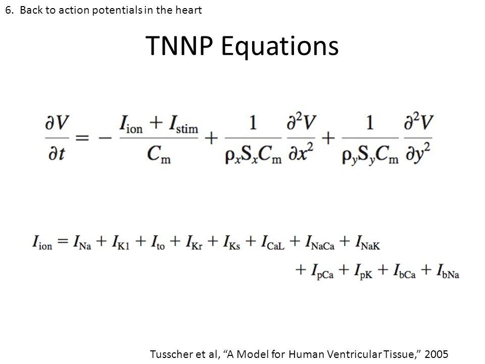TNNP Equations 6.