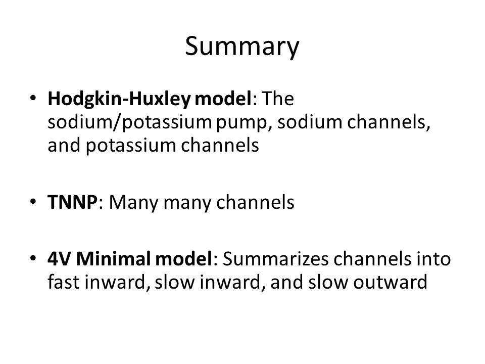 Summary Hodgkin-Huxley model: The sodium/potassium pump, sodium channels, and potassium channels TNNP: Many many channels 4V Minimal model: Summarizes channels into fast inward, slow inward, and slow outward