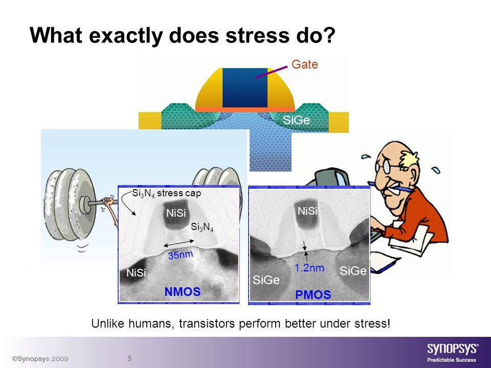 5 What exactly does stress do.