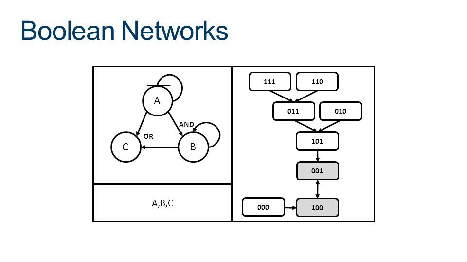 Boolean Networks A CB AND OR 000 100 001 101 011010 111110 A,B,C