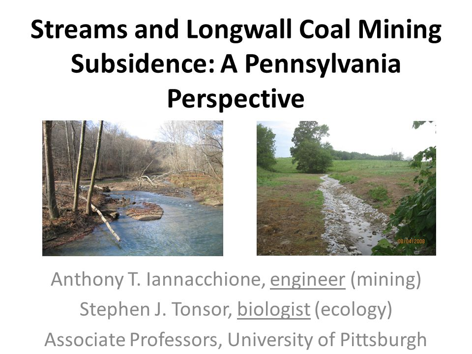 Streams and Longwall Coal Mining Subsidence: A Pennsylvania Perspective Anthony T. Iannacchione, engineer (mining) Stephen J. Tonsor, biologist (ecolo