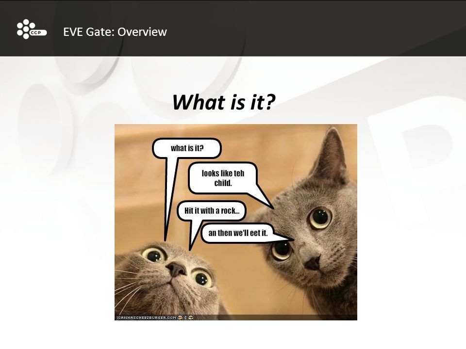 EVE Gate: Overview What is it?