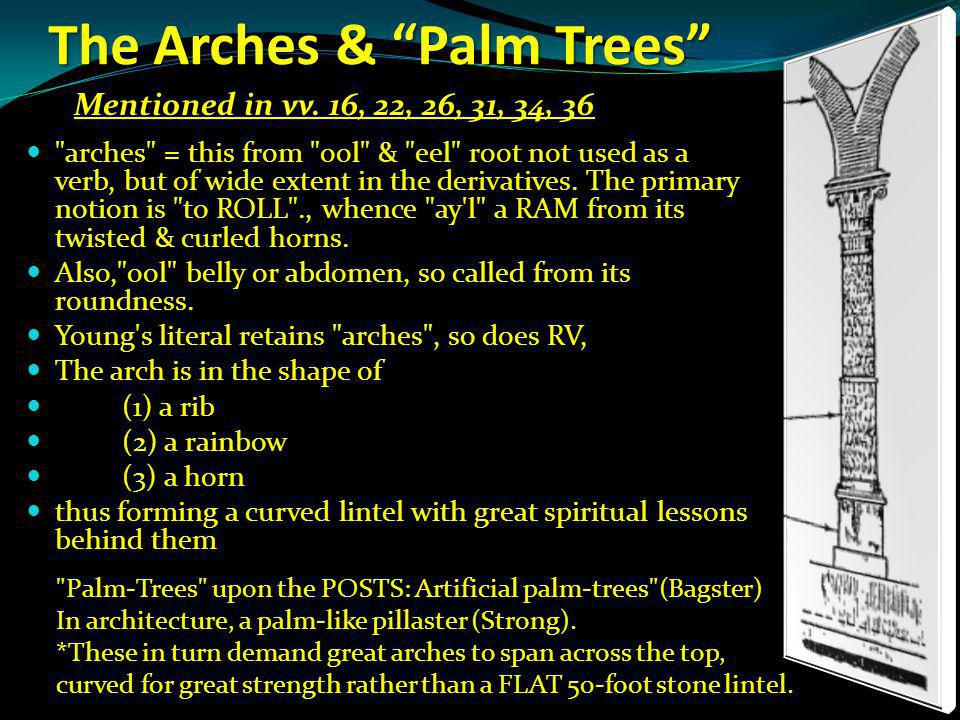 The Arches & Palm Trees arches = this from ool & eel root not used as a verb, but of wide extent in the derivatives.