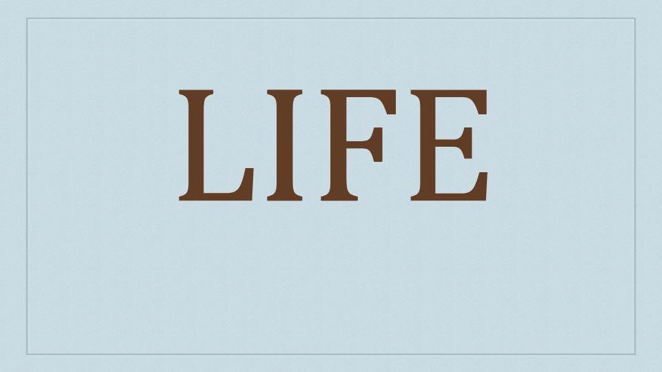 LIFEIF