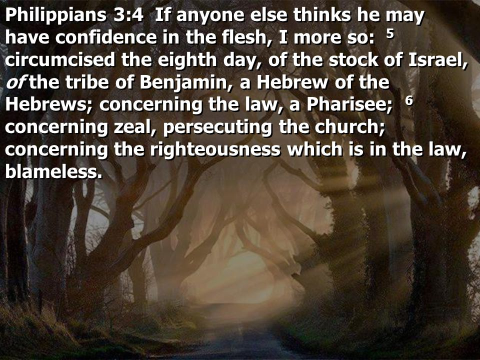 Philippians 3:4 If anyone else thinks he may have confidence in the flesh, I more so: 5 circumcised the eighth day, of the stock of Israel, of the tri