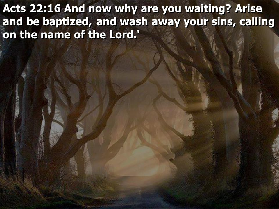Acts 22:16 And now why are you waiting? Arise and be baptized, and wash away your sins, calling on the name of the Lord.' Acts 22:16 And now why are y