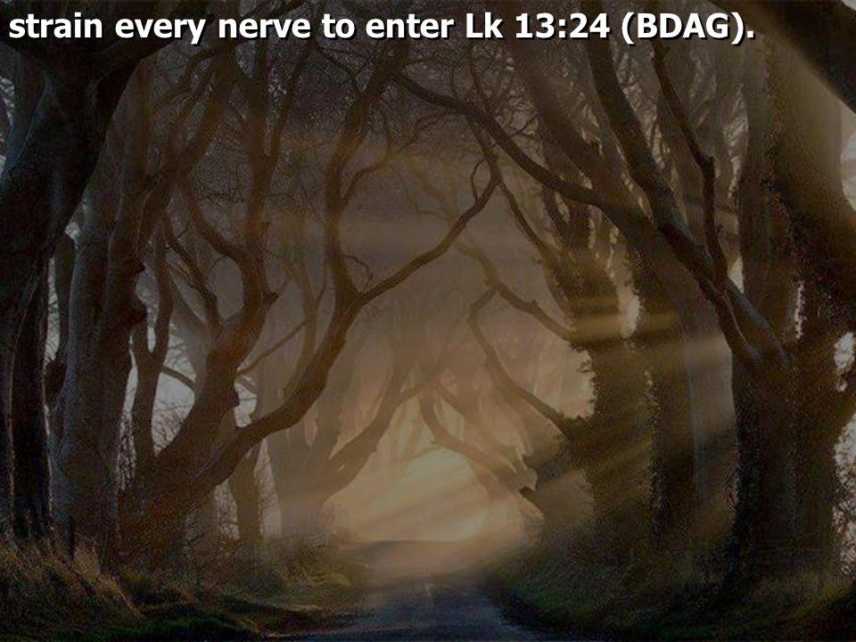 strain every nerve to enter Lk 13:24 (BDAG).