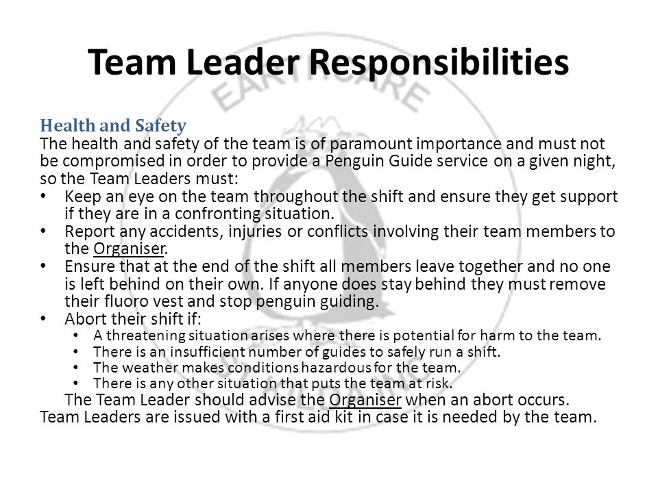 Team Leader Responsibilities Health and Safety The health and safety of the team is of paramount importance and must not be compromised in order to provide a Penguin Guide service on a given night, so the Team Leaders must: Keep an eye on the team throughout the shift and ensure they get support if they are in a confronting situation.
