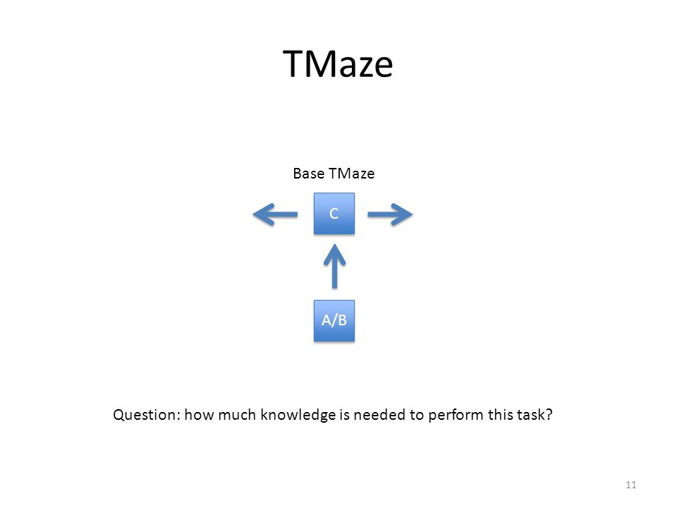 TMaze A/B C C Base TMaze 11 Question: how much knowledge is needed to perform this task?