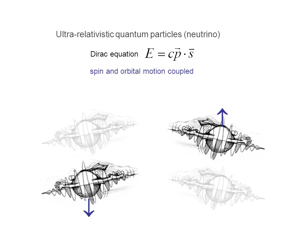 spin and orbital motion coupled Ultra-relativistic quantum particles (neutrino) Dirac equation