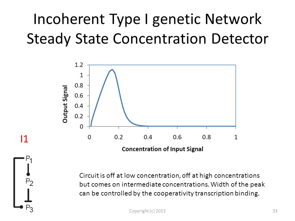 Incoherent Type I genetic Network Steady State Concentration Detector Copyright (c) 201333 I1 Circuit is off at low concentration, off at high concentrations but comes on intermediate concentrations.