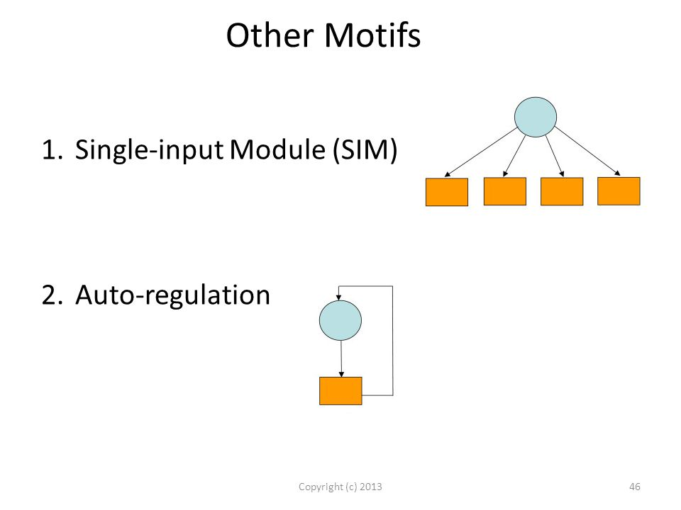 Other Motifs Copyright (c) 201346 1.Single-input Module (SIM) 2.Auto-regulation