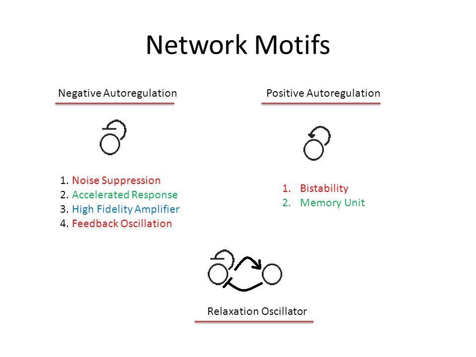 First Translate Non-stoichiometric Network into a Stoichiometric Network Copyright (c) 201317 C1
