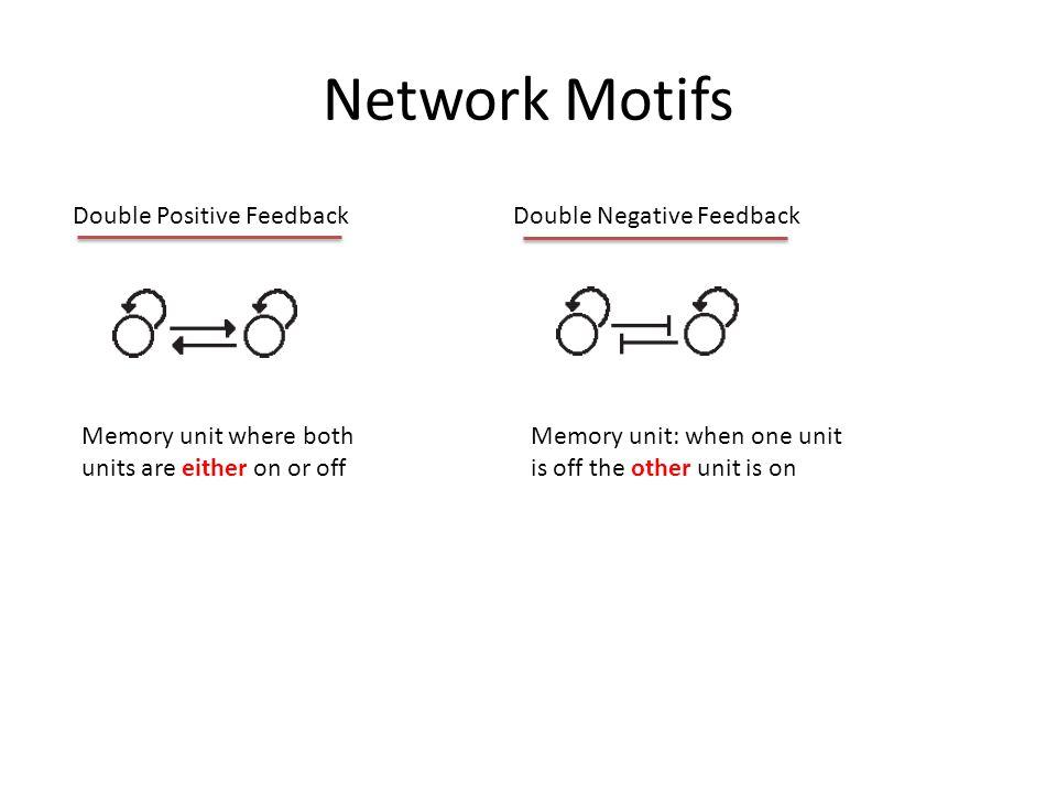 Network Motifs 1.Noise rejection 2.Pulse shifter 1.