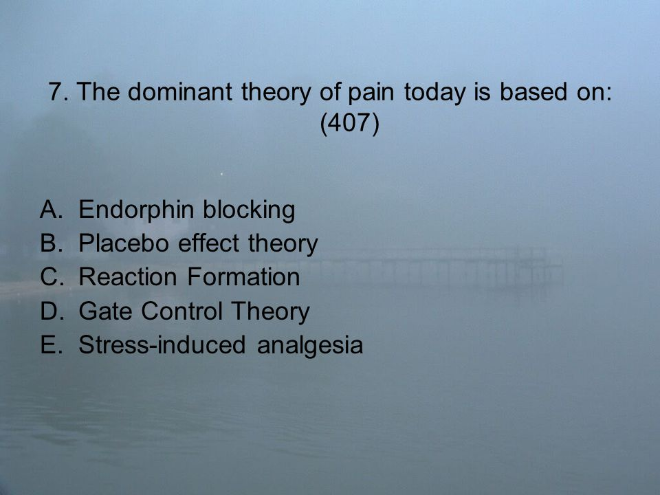 7. The dominant theory of pain today is based on: (407) A.Endorphin blocking B.Placebo effect theory C.Reaction Formation D.Gate Control Theory E.Stre