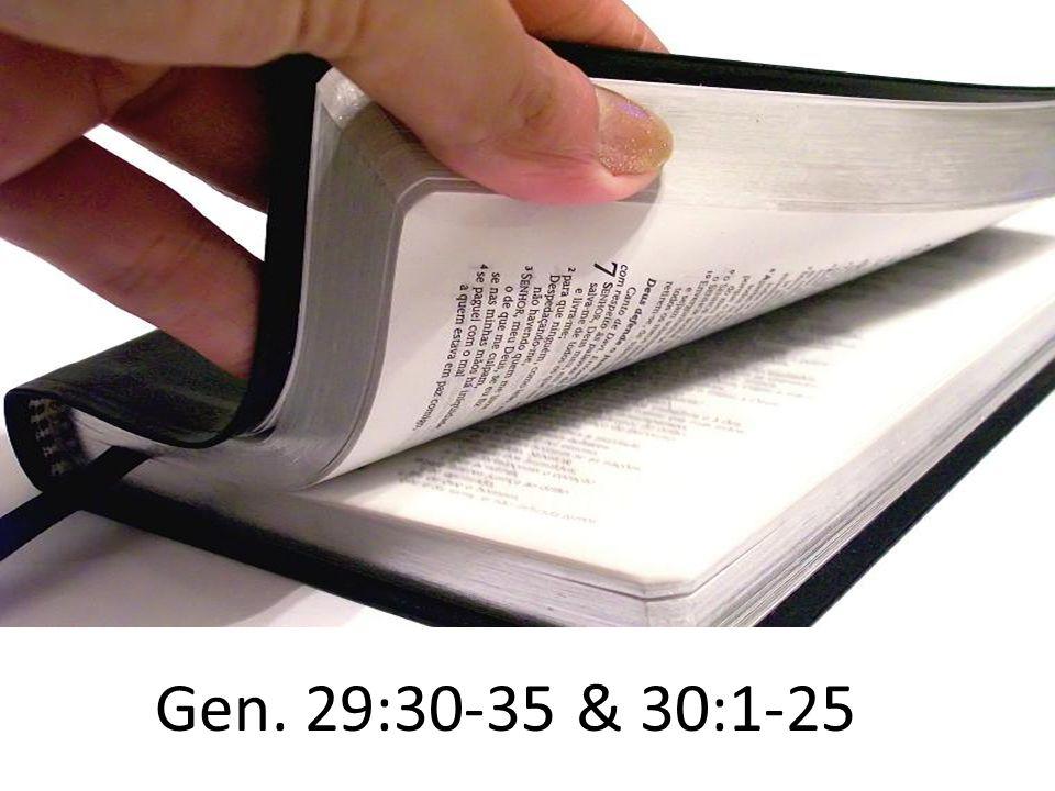 Gen. 29:30-35 & 30:1-25