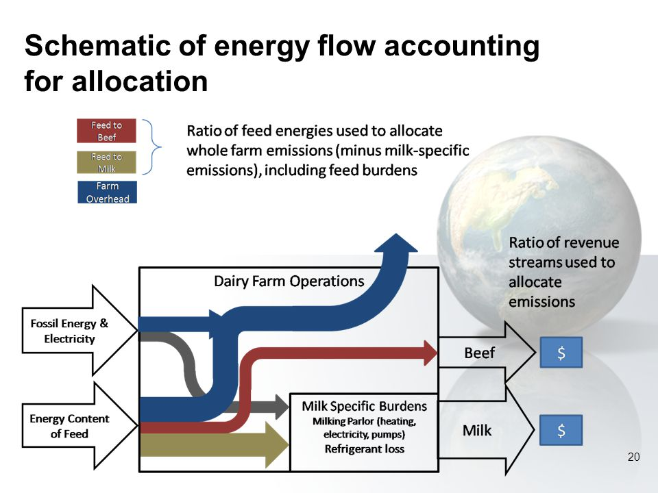 Schematic of energy flow accounting for allocation 20