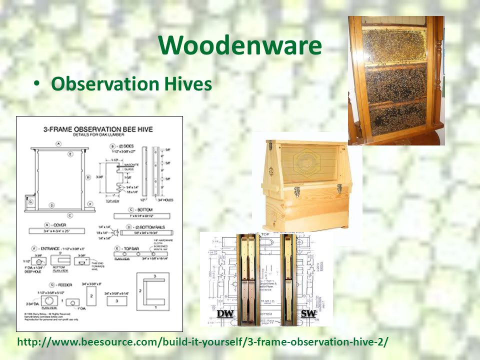 Woodenware Observation Hives http://www.beesource.com/build-it-yourself/3-frame-observation-hive-2/