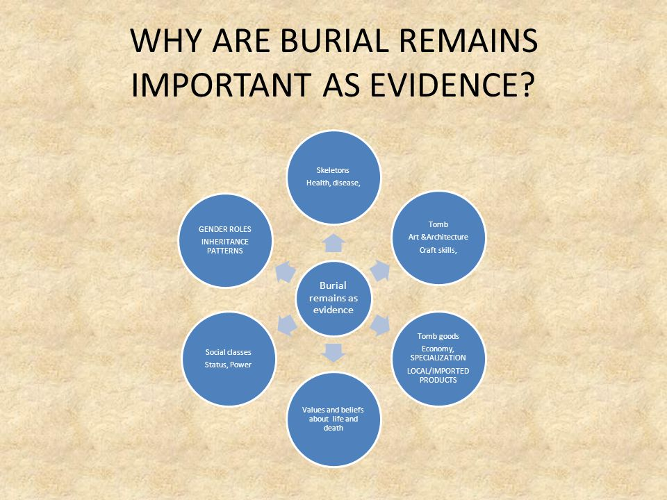 WHY ARE BURIAL REMAINS IMPORTANT AS EVIDENCE? Burial remains as evidence Skeletons Health, disease, Tomb Art &Architecture Craft skills, Tomb goods Ec
