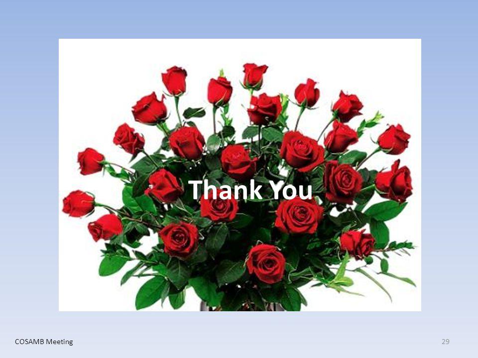 Thank You 29COSAMB Meeting