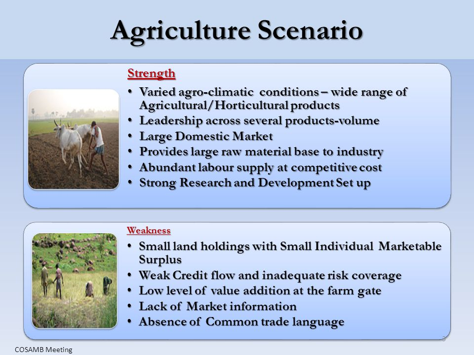 Agriculture Scenario Strength Varied agro-climatic conditions – wide range of Agricultural/Horticultural productsVaried agro-climatic conditions – wide range of Agricultural/Horticultural products Leadership across several products-volumeLeadership across several products-volume Large Domestic MarketLarge Domestic Market Provides large raw material base to industryProvides large raw material base to industry Abundant labour supply at competitive costAbundant labour supply at competitive cost Strong Research and Development Set upStrong Research and Development Set upWeakness Small land holdings with Small Individual Marketable SurplusSmall land holdings with Small Individual Marketable Surplus Weak Credit flow and inadequate risk coverageWeak Credit flow and inadequate risk coverage Low level of value addition at the farm gateLow level of value addition at the farm gate Lack of Market informationLack of Market information Absence of Common trade languageAbsence of Common trade language 3 COSAMB Meeting